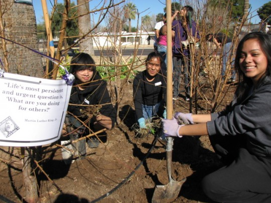 Students from Washington High School's Interact Club spent part of MLK Day volunteering in the garden.